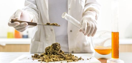 wetenschappelijk onderzoek naar propolis