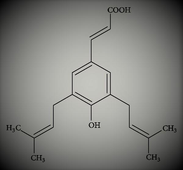 probioticum artepilline c